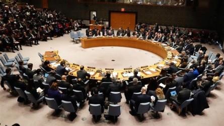 ONU ofrece ayuda para crisis política en Venezuela - ảnh 1