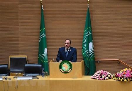 Cumbre de la Unión Africana valora cooperación - ảnh 1