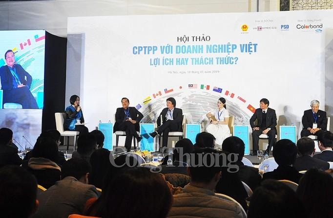 Sector empresarial de Vietnam por aprovechar oportunidades de acuerdo CPTPP - ảnh 1