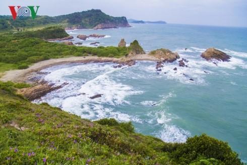 La isla de Co To - perla azul en el Golfo de Tonkín - ảnh 10