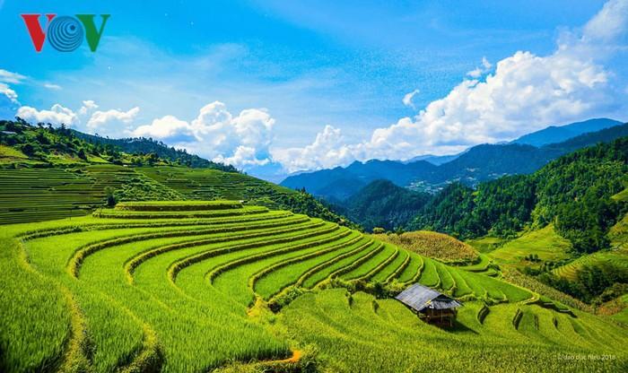 Los 10 mejores destinos vietnamitas para disfrutar en el verano  - ảnh 2