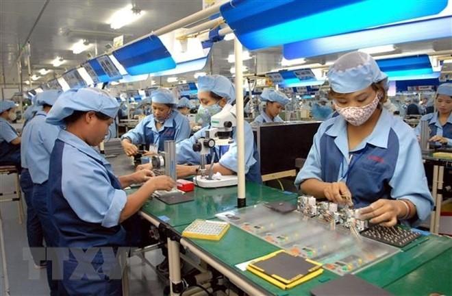 Empresas vietnamitas aprovechan oportunidades del tratado comercial con la Unión Europea - ảnh 1