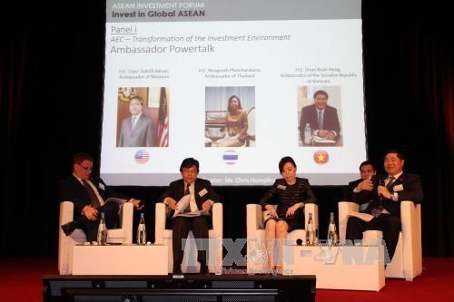 越南与东盟其他国家在德国联合举行促进对东盟投资研讨会 - ảnh 1