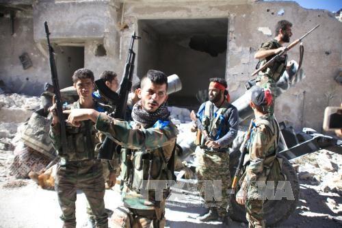 叙利亚政府军进攻阿勒颇行动取得进展 - ảnh 1