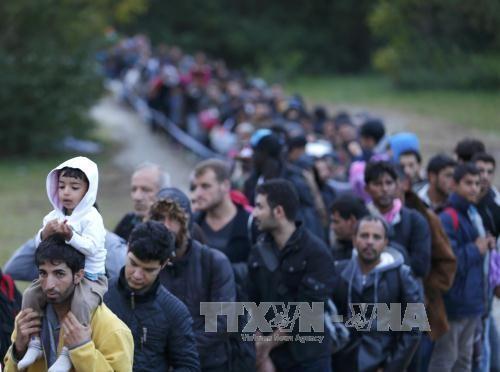 欧盟成员国开始遣返难民回希腊 - ảnh 1