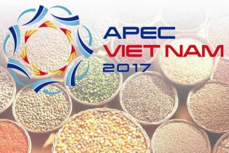 越南继续推动实施2017年亚太经合组织系列会议的优先内容 - ảnh 1