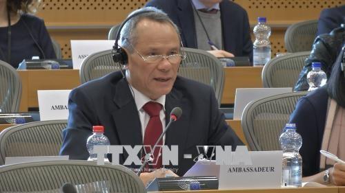 欧洲议会促进批准越欧自贸协定 - ảnh 1