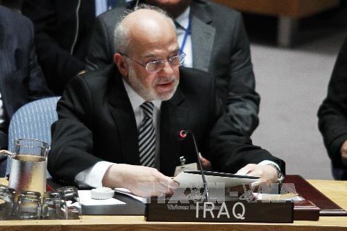 伊拉克不允许美国在伊境内建设军事基地 - ảnh 1