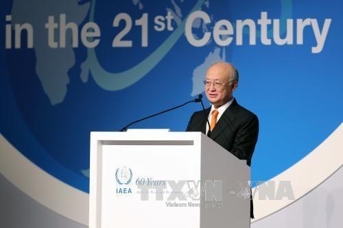 IAEA:伊核协议若失效将是重大损失 - ảnh 1