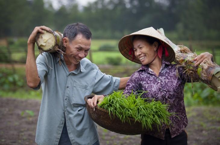 越南在性别平等领域取得巨大成就 - ảnh 1
