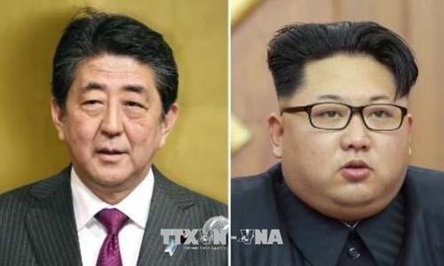 日本考虑与朝鲜举行首脑会晤 - ảnh 1