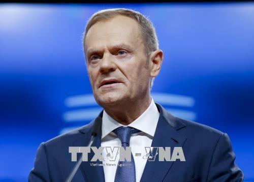 欧洲理事会主席图斯克敦促特朗普重启欧美贸易谈判 - ảnh 1