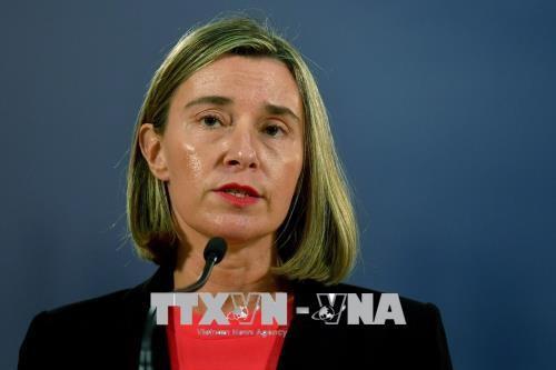 欧盟承认伊朗遵守伊核协议 - ảnh 1