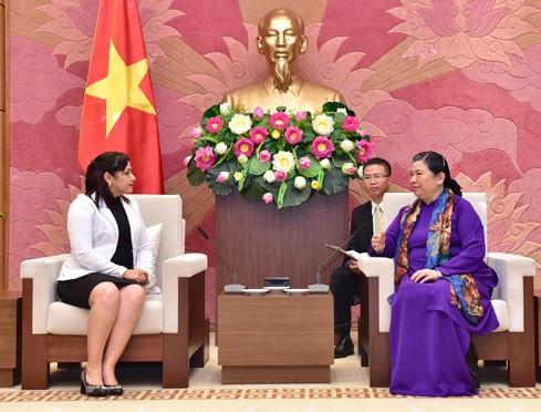 越南国会副主席丛氏放会见古共青盟第一书记冈萨雷斯一行 - ảnh 1