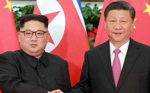 Republik Korea menyambut baik hasil pertemuan  puncak Tiongkok-RDRK - ảnh 1