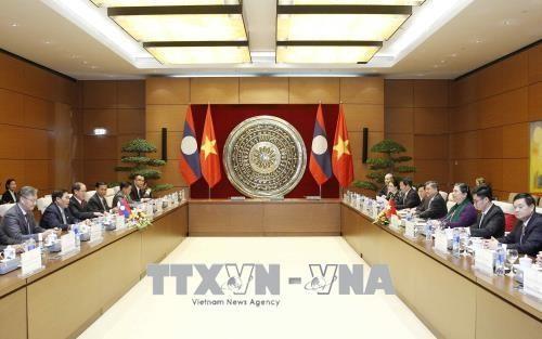 越南国会副主席丛氏放会见老挝国会副主席桑努 - ảnh 1