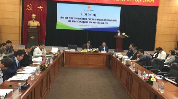 克服缺乏国内贸易发展总体战略的现象 - ảnh 1