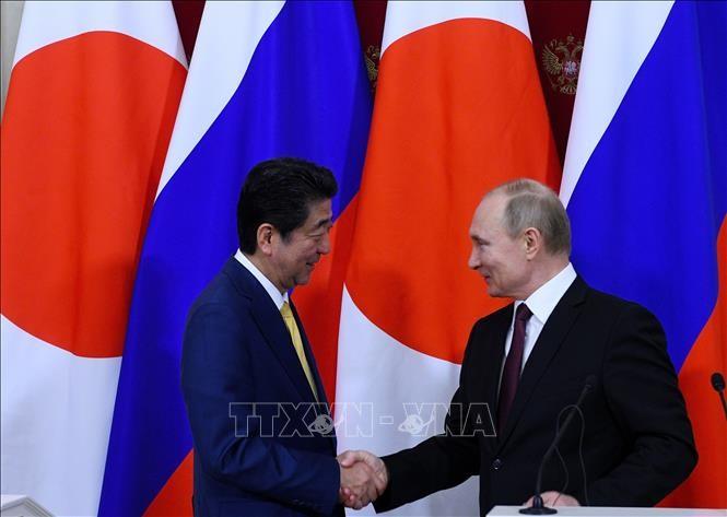 日本和俄罗斯决心解决领土争端 - ảnh 1
