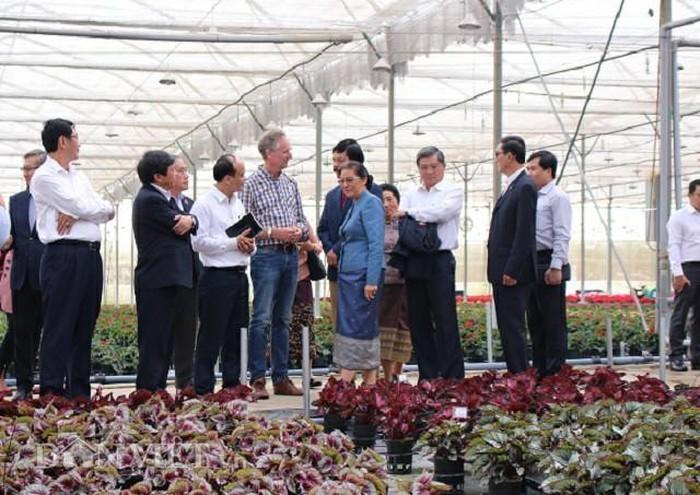 老挝国会高级代表团对林同省进行工作访问 - ảnh 1
