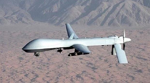 日本反对俄罗斯在争议岛屿部署无人机 - ảnh 1