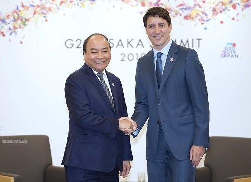 G20峰会:阮春福会见一些国家领导人 - ảnh 1