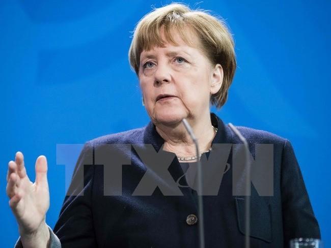 Allemagne : le FDP se hisse à la troisième place - ảnh 1