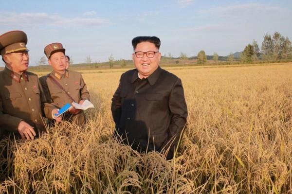 Pyongyang ne montrait  aucun signe d'intérêt» pour un dialogue - ảnh 1