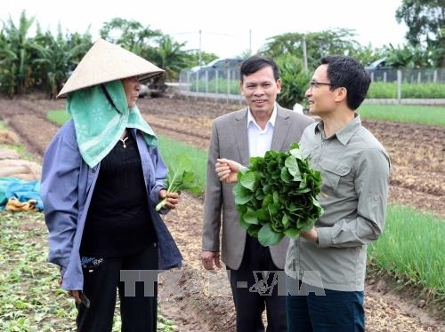 Vu Duc Dam promeut la production maraîchère bio à Hung Yen  - ảnh 1