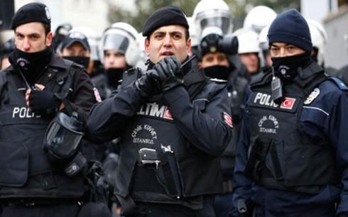 Arrestation en Turquie de membres présumés de l'organisation Etat islamique - ảnh 1