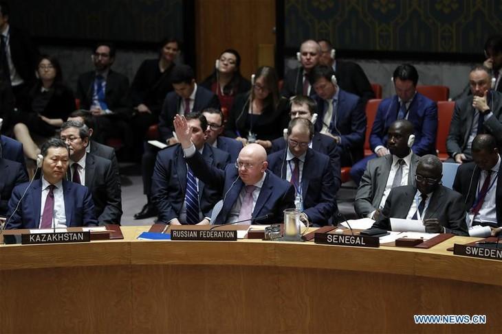 Veto russe à l'ONU à la prolongation des enquêtes internationales sur les armes chimiques en Syrie - ảnh 1
