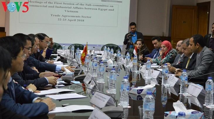 Le Vietnam et l'Egypte renforcent leur coopération commerciale - ảnh 1