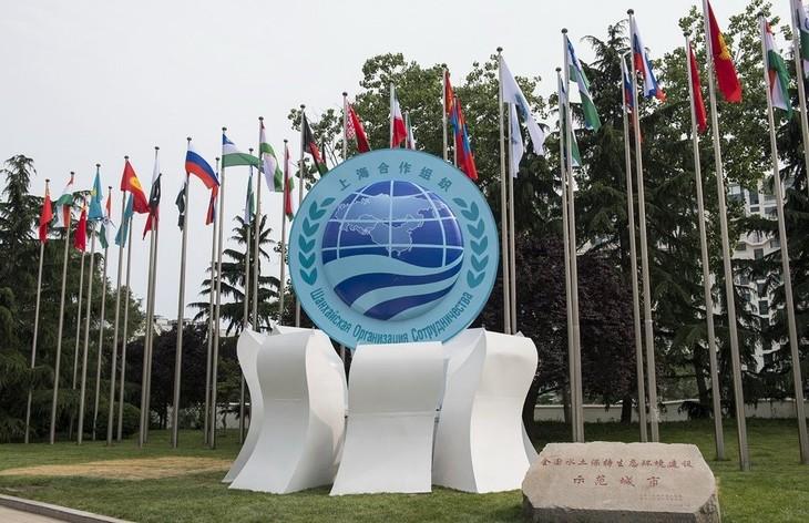 La Chine accueille le sommet de l'Organisation de coopération de Shanghaï  - ảnh 1