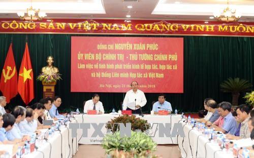 Nguyên Xuân Phuc: les coopératives jouent un rôle important à l'heure de la mondialisation - ảnh 1