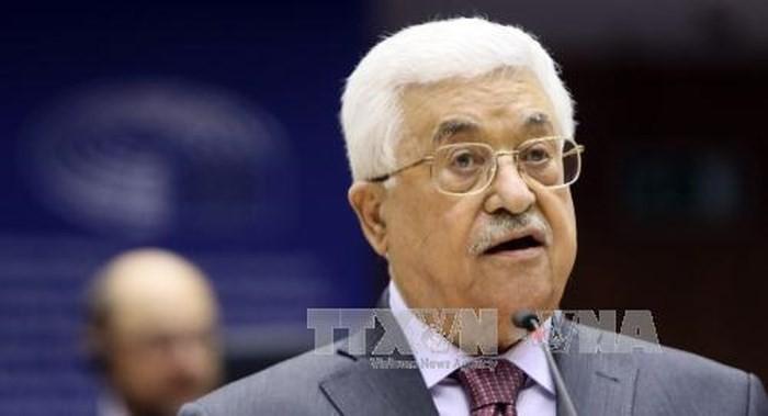 """Le président palestinien condamne la loi sur """"l'État national du peuple juif"""" - ảnh 1"""
