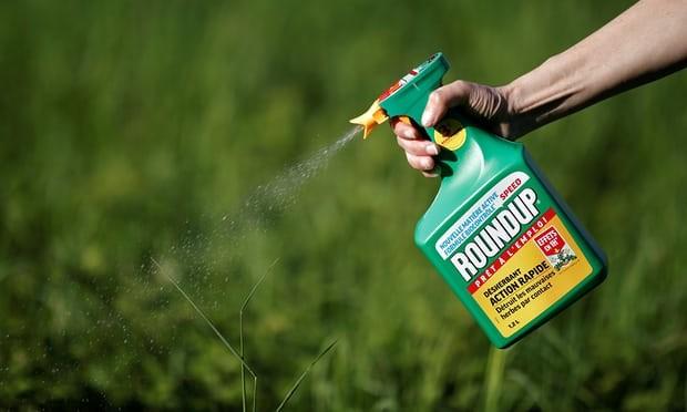 Monsanto condamné pour avoir causé le cancer de Dewayne Johnson  - ảnh 1