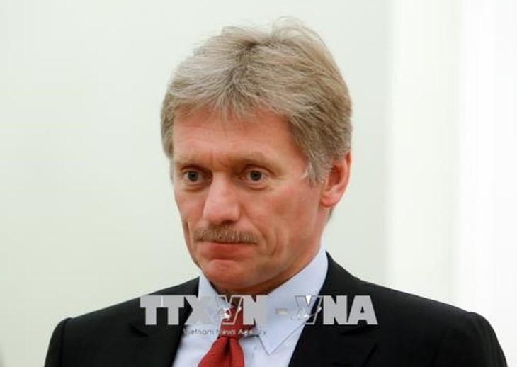 Réponse du Kremlin sur un éventuel sommet Russie-Turquie-France-Allemagne - ảnh 1