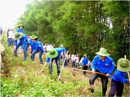 Quand les organisations sociales participent à la protection environnementale - ảnh 1