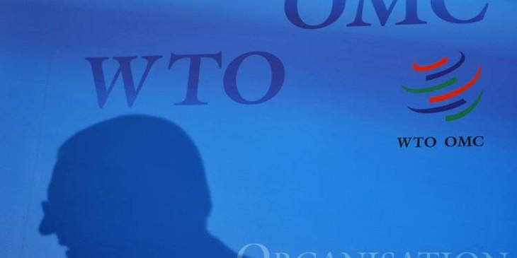 G20 Commerce: consensus sur la nécessité de réformer l'OMC - ảnh 1