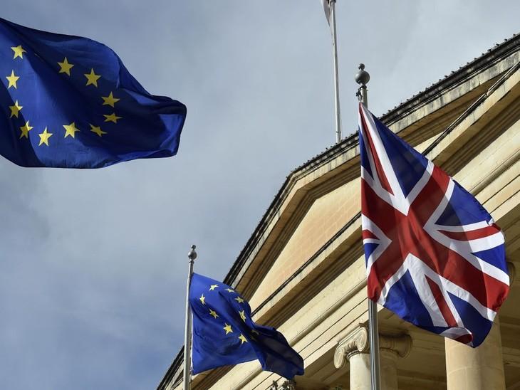 Brexit: Même sans accord, il faudra bien des arrangements, dit l'UE - ảnh 1