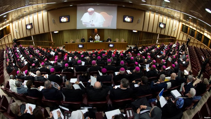 Vatican: début d'un sommet inédit sur la lutte contre la pédophilie  - ảnh 1