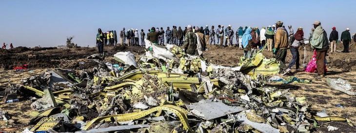 Crash d'un avion de ligne en Ethiopie: les deux boîtes noires ont été retrouvées - ảnh 1