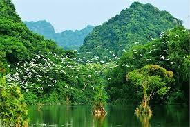 Tourisme: Leçon 9: Voyage à Ninh Binh - Deuxième partie - ảnh 1