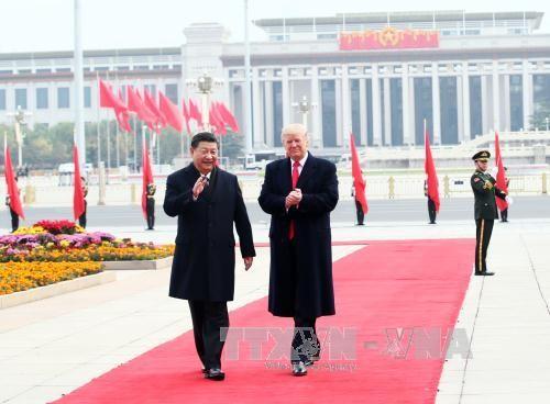 Donald Trump: «Mes entretiens avec le président Xi Jinping ont été très productifs» - ảnh 1
