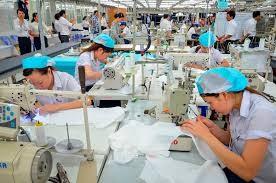 Le vietnamien du commerce: leçon 15: analyser la marge de l'entreprise - ảnh 1