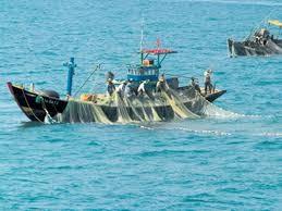 Compréhension orale: leçon 9: vers un développement de l'économie maritime - ảnh 1