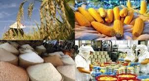 Compréhension orale: leçon 11: l'exportation des produits agricoles en hausse - ảnh 1
