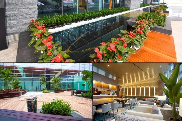 L'aéroport international de Vân Dôn  - ảnh 4