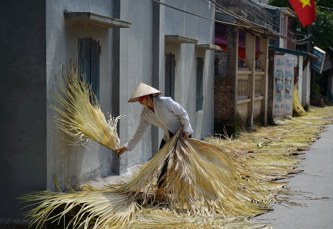 Tri Lễ - a village that makes traditional palm leaf hats - ảnh 1