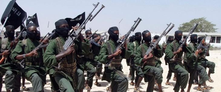 Somali sketches new strategies to fight Al-Shabaab - ảnh 1