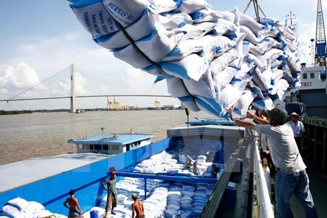 Vietnam's rice exports to Malaysia skyrocket - ảnh 1